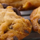 Oatmeal and chocolate nut cookies
